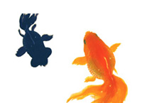 金魚が泳ぐ -深堀隆介-